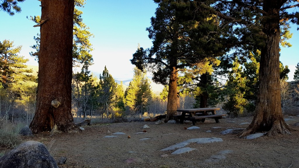 Obsidian Campground: Quiet Eastern Sierra Camping Packed with Adventure